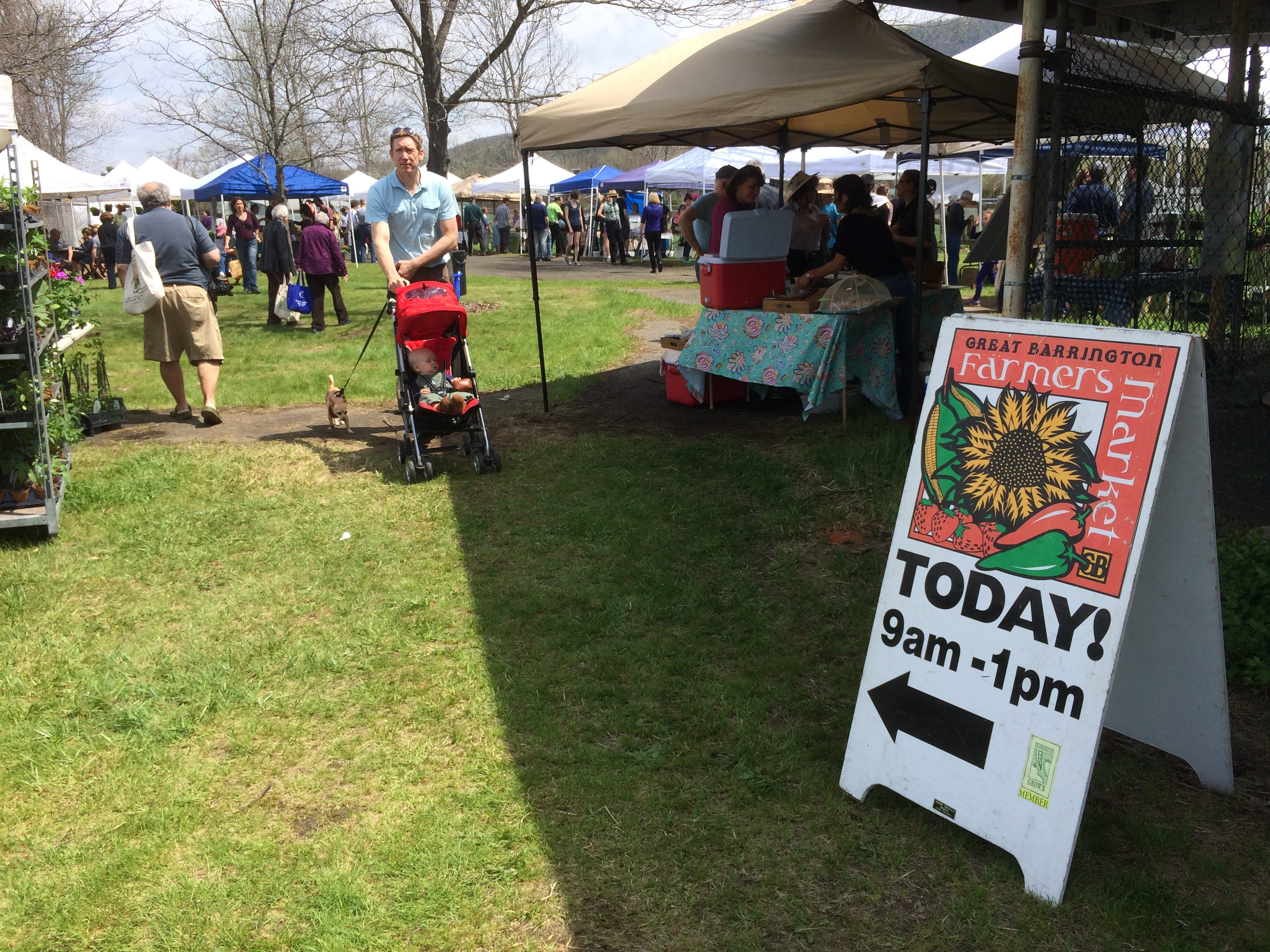 Great Barrington Farmers Market on opening day.