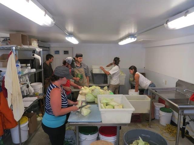 Local Generosity Economy members making kraut. Courtesy Michelle Kaplan.