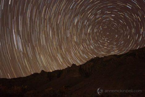 Star trails. Photo by Anne McKinnell.