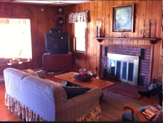 Wood paneling made the original living room feel dark and small.