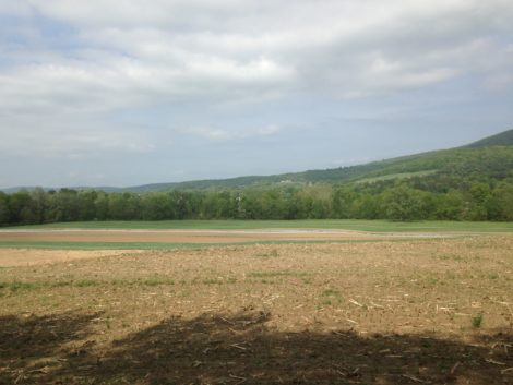 The Stosieks have purchased new land in Hillsdale.