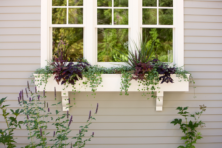 Large window box below kitchen window and sink. Photo: Michael Lavin Flower