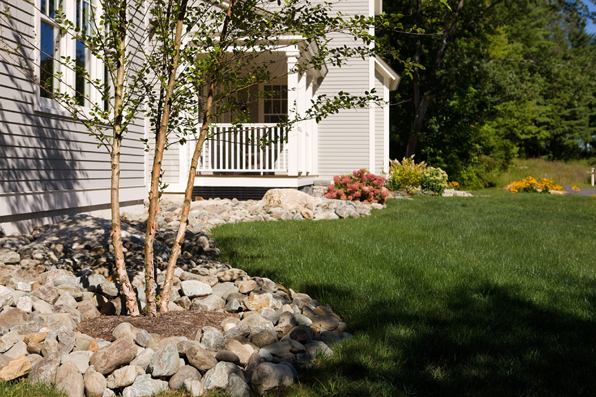 Front of house with front porch in background. Multi-stem River Birch in foreground amongst river stone bed. Photo: Michael Lavin Flower