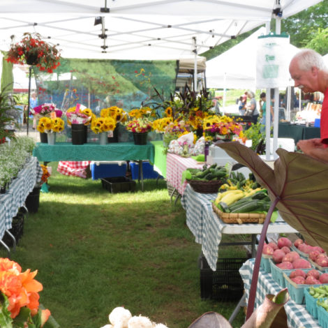 The Double Decker stand at the Great Barrington Farmers Market.