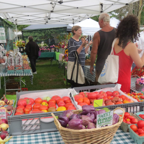 The Double Decker Farm array of tomatoes for sale at the Great Barrington Farmers Market.