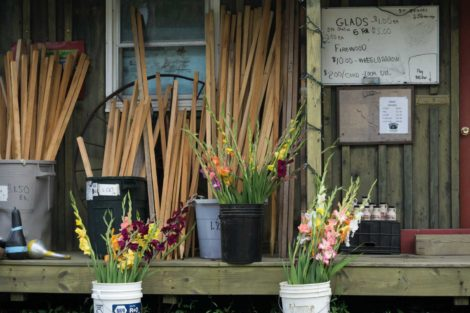The flower stand at  Sweets' tree farm. Photo: Honey Sharp