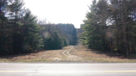 A swathe of forest cleared to make way for a natural gas pipeline.