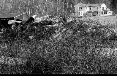 The Reed family homestead in 1969.