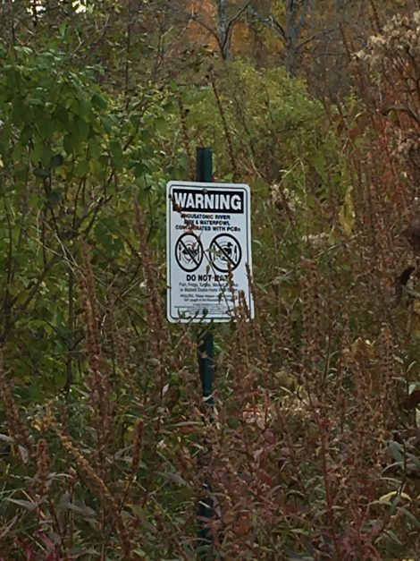 Along the Housatonic River south of Pittsfield, a warning sign advises against eating fish or wildlife from the river.