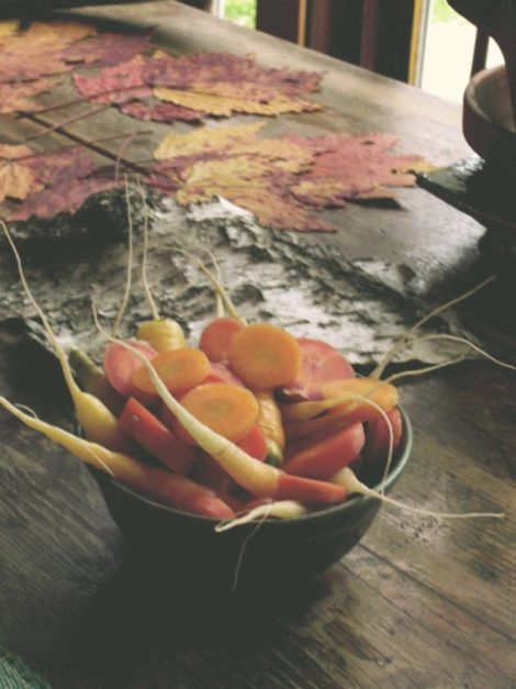 Giving thanks for trees - red maple leaves, birch bark - and for the fancy of carrots of many colors and long tails. Photo by Judy Isacoff
