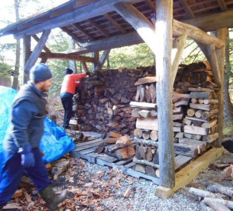 Riley Waggaman, foreground, and Mackenzie Waggaman engaged in the craft of stacking firewood. Riley's stable, stacked wood columns create picturesque containers to stack against in this open-air shelter. Photo by Judy Isacoff