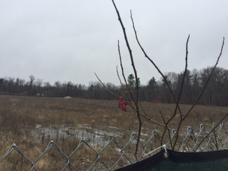 This 8-acre field, now cleared of the New England Log Homes structures, would become a residential and commercial site, under plans drafted by the CDC.