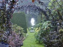 Copper beeches are trained to frame a view through the garden.