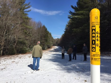 The existing pipeline corridor in Otis State forest would be expanded by 100 feet (to the left in this photo). Photo: Heather Bellow