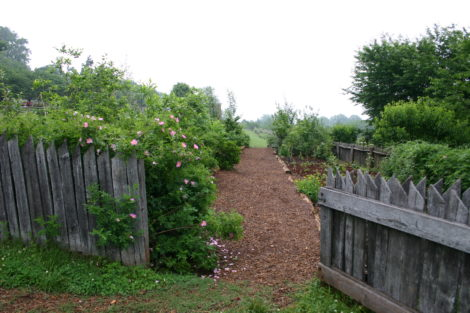 """The nursery at Monticello. Every garden should have a """"boarding school"""" were plants can be tested and mature before being placed into the border. Photo: Lee Buttala"""