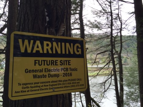 A warning sign on the banks of Rising Pond. Photo: Heather Bellow