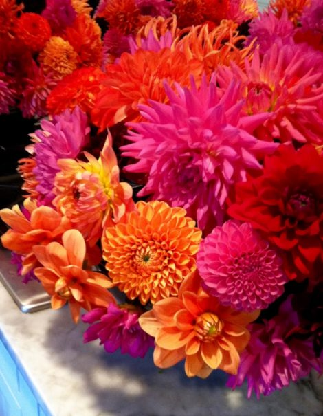 This bowl of orange and purple dahlias includes many forms-- from cactus flowered varieties to decorative and water lily types -- and shows that there really is a perfect type of dahlia for every occasion.