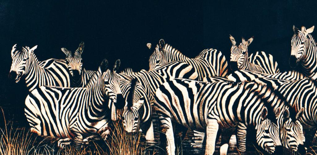 """The Zebras,"" eggshell lacquer screen by Nicholas Mongiardo, 84""x120"""