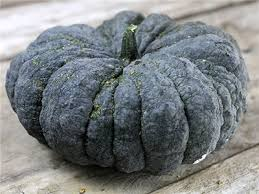 Just because a pumpkin looks like its variety does not mean that the seeds inside are not the product of out-crossing. It is the seeds, and not the fruit, that carry forward the genes of both parents in the fertilization process. These seeds might produce progeny with traits that are quite different from the mother plant.