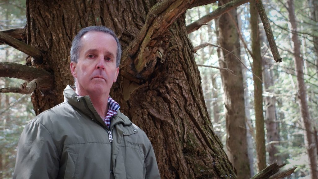 "State Rep. William ""Smitty"" Pignatelli, D-Lenox, in Otis State Forest last March. Photo: Ben Hillman"