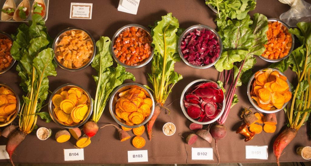 Many varieties of beets presented for tasting at a Culinary Breeding Network Variety Showcase. Photo courtesy of Lane Selman. All rights reserved.