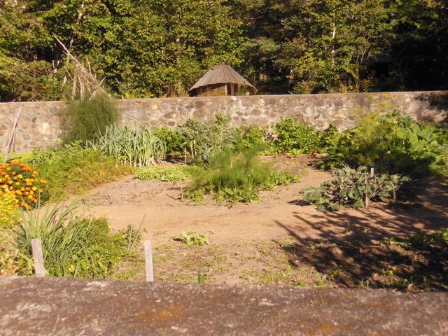 Garden perimeter stone walls constructed by Helen Nearing. Photo: Mackenzie Waggaman