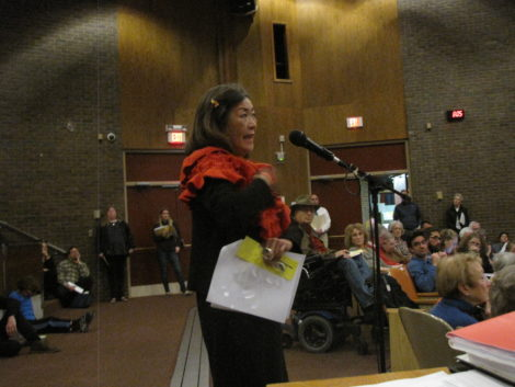 Sharon Gregory, urging a revision to the proposed solar bylaw. Photo: David Scribner