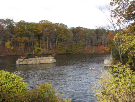 A view across Rising Pond a of the banks where GE's landfill would be situated. Photo: David Scribner