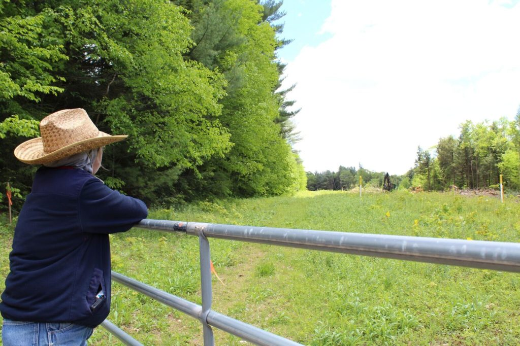 Cold Spring Road resident Sue Baxter looks out over the Kinder Morgan easement from her Sandisfield property abutting the Otis State Forest. Photo: Terry Cowgill