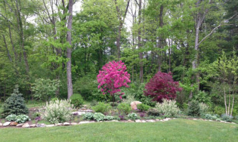 Plantings in the large beds offer something different for every season. Photo: Karen Shreefter