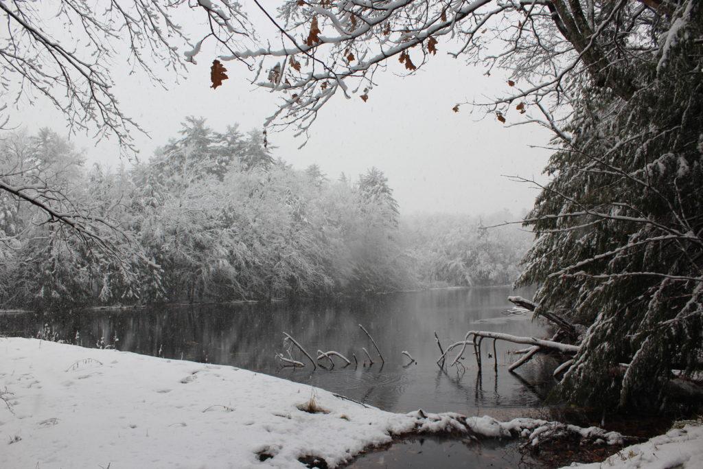 Averic Lake by John Morse of Stockbridge, Mass.