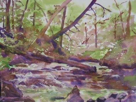 The Yokum Brook cascades near our home in Lenox. Watercolor by Carolyn Newberger