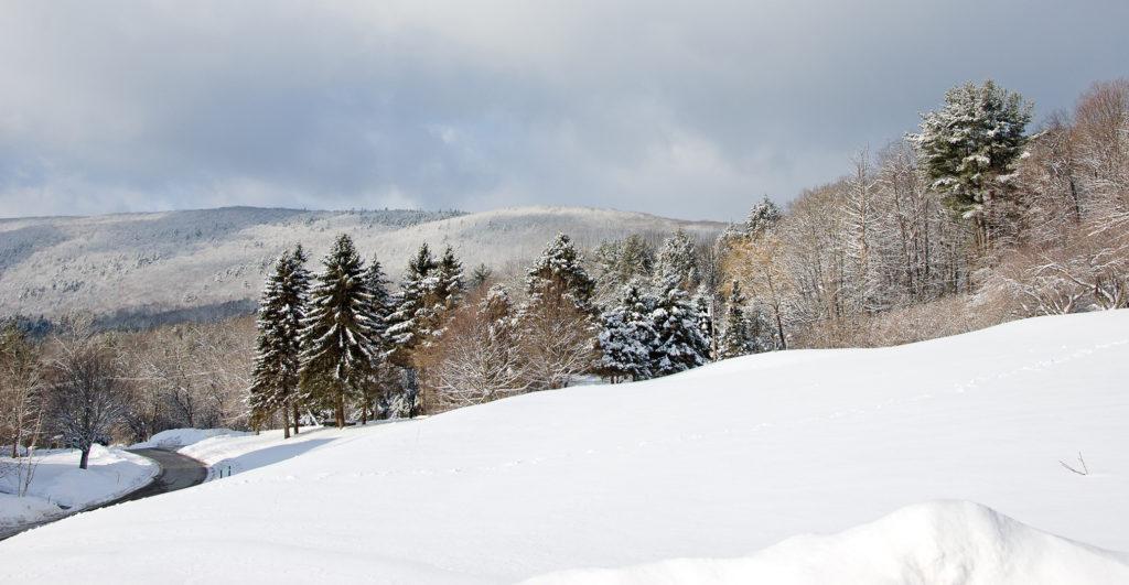 The Berkshire Hills Along Route 183 by Shirley Blanchard of Stockbridge, Mass.