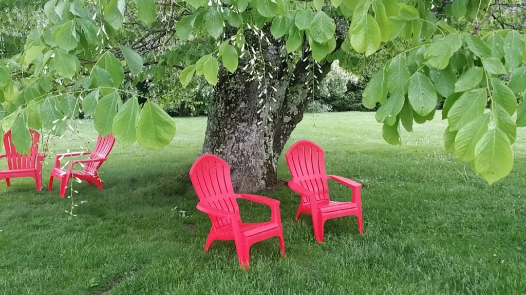 The red chairs beckon. June at the Norman Rockwell Museum by Tammis Coffin of Lenox, Mass.