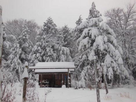 NATURE'S TURN: Creation's winter grandeur