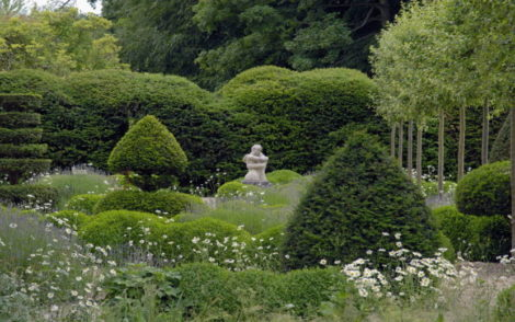 NATURE'S TURN: Gardens that welcome the wild