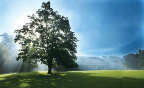 PREVIEW: The latest popular artist bookings at Tanglewood