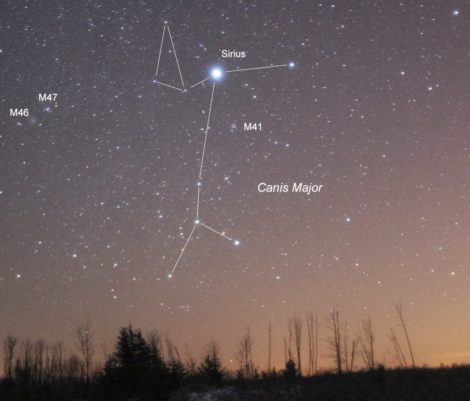 EYES TO THE SKY: Starlight, Sirius rising, and the dog days of summer