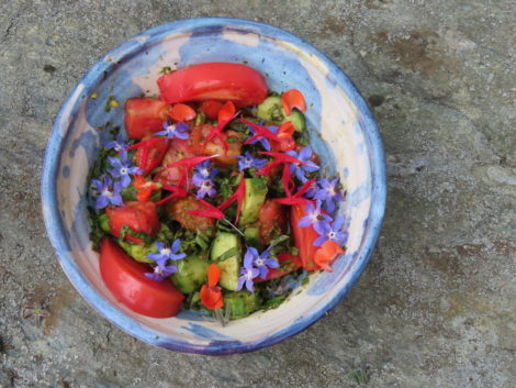NATURE'S TURN: Harvest, feast and prepare for storage, renewal