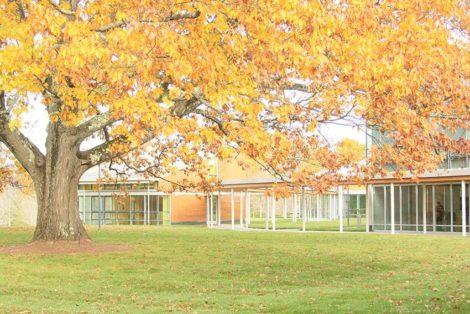 Autumn at Tanglewood
