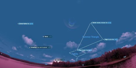 EYES TO THE SKY: Cygnus the Swan soars as Summer Triangle sets