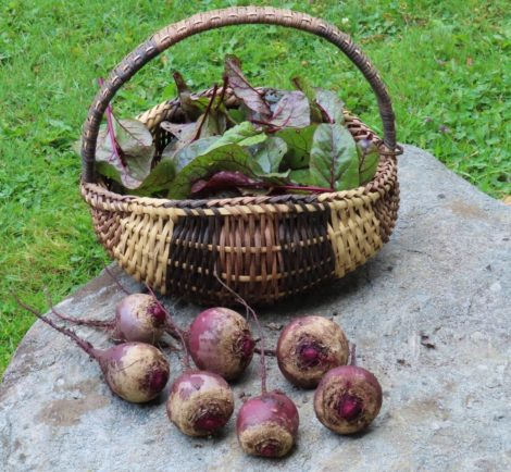NATURE'S TURN: Garden to table: Beets for every palate
