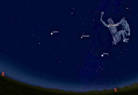 EYES TO THE SKY: Find Orion or Gemini and tell 'Globe at Night': Here's how
