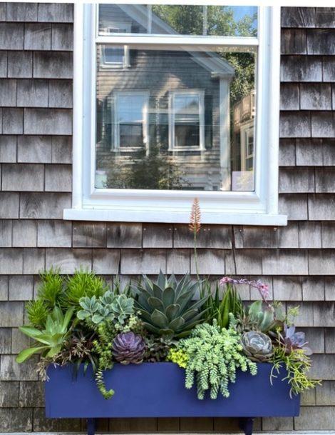 window box painted bright blue