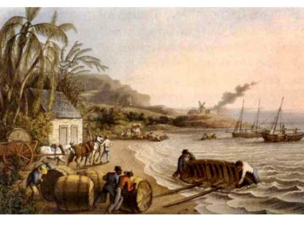 Painting of Hogsheads of rum, painted ca. 1823 William Taylor