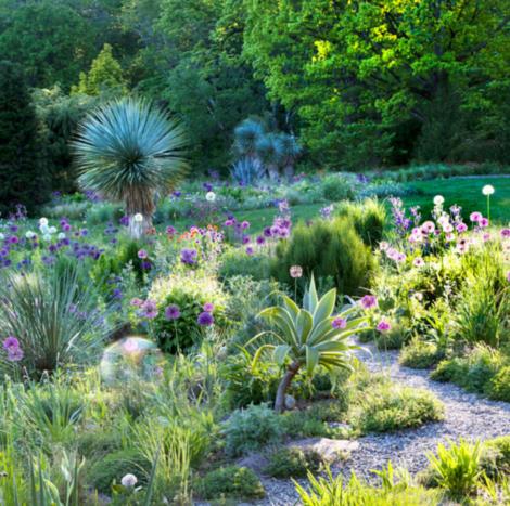 Gravel garden at Chanticleer