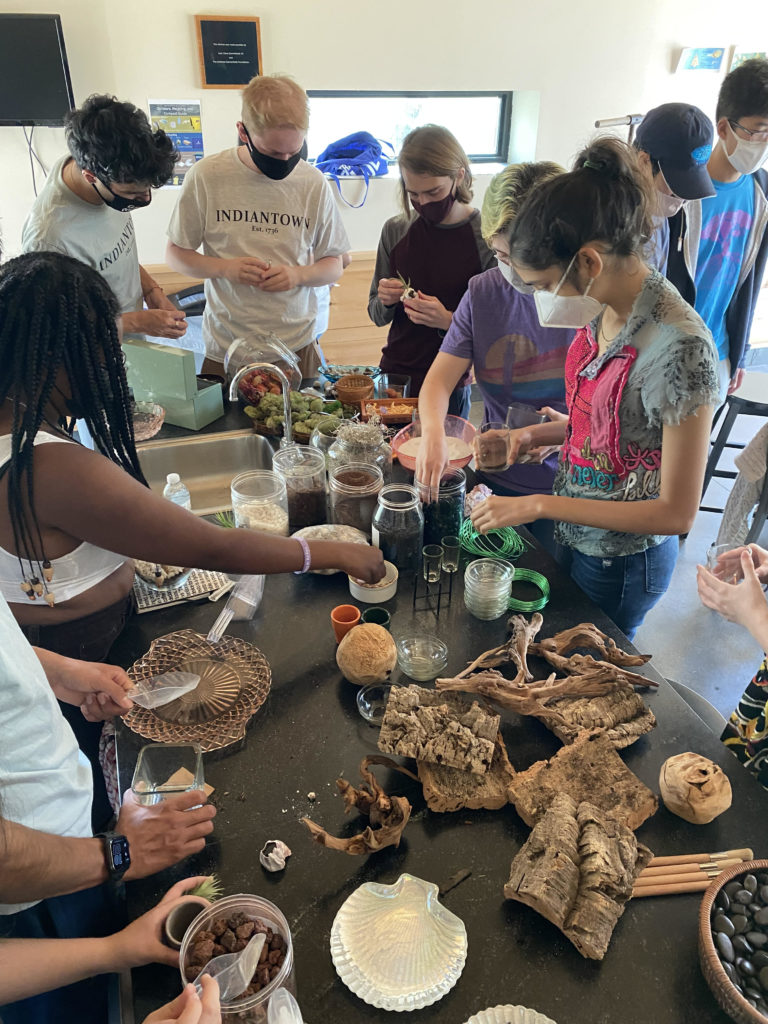 Making terrariums at The Plant Connector in North Adams
